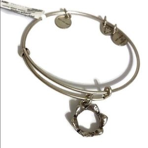 Alex and Ani Queen's Crown Charm Bracelet